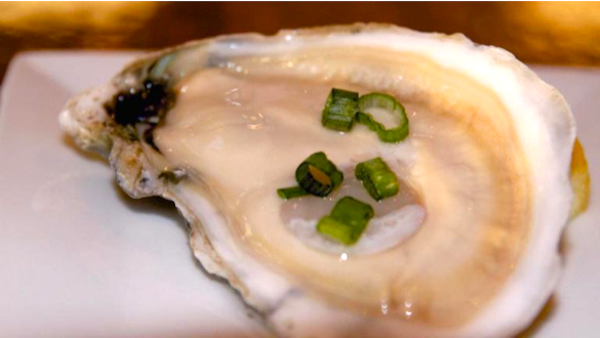 A single raw oyster on the half shell on a white plate