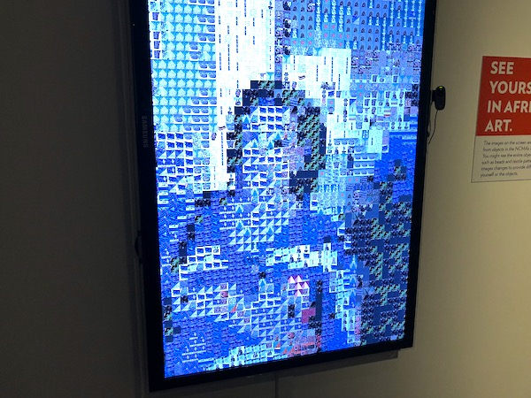 A digital screen creating a portrait of the woman standing in front of it.
