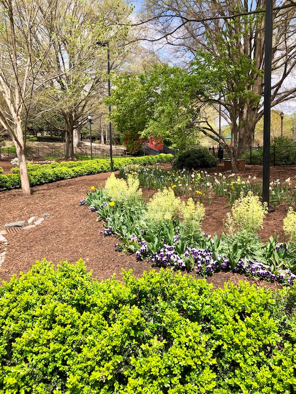 Beautiful landscape and garden with brown mulch areas